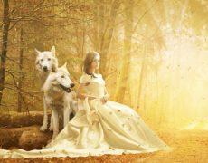 Ein Sommermärchen ohne den bösen Wolf
